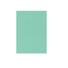 Cartulina verde claro plana 50x70 Primavera (x50)