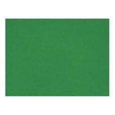 Cartulina verde oscura plana 50x70 primavera (x50)