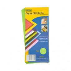 Guía Clasificadora Celuguía Verde  NORMA X190 (20)