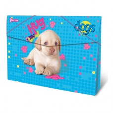 Carpeta NORMA Fuelle Dogs  (X20)