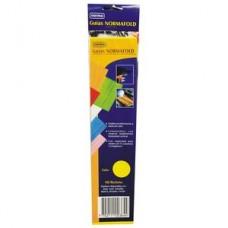 Guía Clasificadora Celuguía Amarilla  NORMA (X20) (X190)